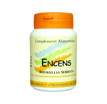 ENCENS (BOSWELLIA SERRATA)